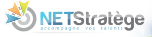 netstratege